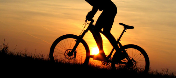 1047mountain_biking